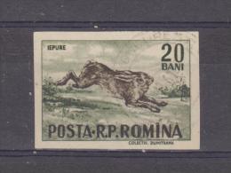 1956, GIBIERS,  YV No 1488  Et MI No 1614  Lievre / Lepus Europaeus - 1948-.... Republiken