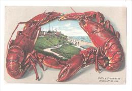 FANTASY SEASIDE LOBSTERS WESTCLIFF ON SEA Nr Southend SEA FOOD ESSEX USED 1907 - Southend, Westcliff & Leigh