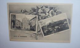 C2003B  CARTOLINA VIAGGIATA 1932  SALUTI DA CAVRIANA VEDUTINE - Mantova