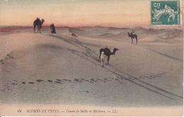 CPA Dunes De Sable Et Méchara - 1908 (7140) - Algerien