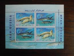 2003 - Gemeenschappelijke Uitgifte Rusland Dieren - Joint Issue Russia M/S MNH ** Caspian Seal + Beluga - Joint Issues