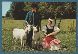 70 - LES GAUCH´NOTS ET GAUCH´NOTTES - LE BERGER... - HAUTE-SAONE JOLIE- Non écrite -2 Scans-10.5 X 15- CIM - Trachten & Folklore