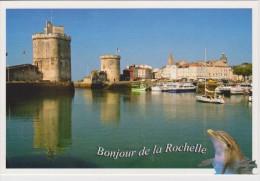 Bonjour De La Rochelle - DAUPHIN - 2 Scans - - Dauphins