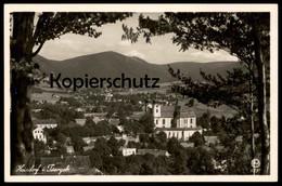 ALTE POSTKARTE HAINDORF IM ISERGEBIRGE AUSBLICK VOM NUSSSTEIN HEJNICE Bei Glatz Reichenberg Cpa Postcard Ansichtskarte - Schlesien