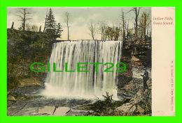 OWEN SOUND, ONTARIO - INDIAN FALLS - TRAVEL IN 1906 - W.K. IRELAND & CO - ANIMATED - - Ontario