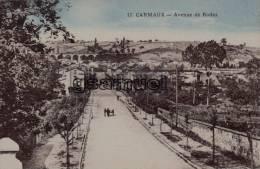 D - 81 - Tarn. - CARMAUX - Avenue De Rodez - Edit E. Caylou. - (voir Scan). - Carmaux