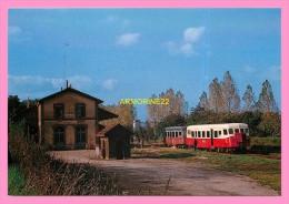 CPM  BOULOIRE  Ligne De Mamers A St Calais  Autorail Verney Et Remorque Quittant La Gare - Bouloire