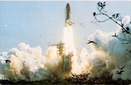 POSTCARD NASA STS-4 LAUNCH, WATERBIRDS. EDIT. SMITH CARD Co. CIRCULATED 1982-CPA- TO SAO PABLO, BRASIL- GECKO. GECKO. - Sterrenkunde