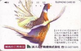 Télécarte Japon / 110-160180 - Oiseau FAISAN - PHEASANT Bird Japan Phonecard - FASAN Vogel - 2481 - Gallinaceans & Pheasants