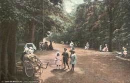 75 BOIS DE BOULOGNE SOUS LES OMBRAGES ANIMEE PAS CIRCULEE - Parques, Jardines