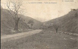 Gard : La Grand Combe, Vallée De Branoux - La Grand-Combe