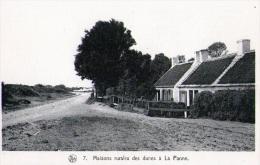 La Panne : Maisons Rurales Des Dunes (vierge) - De Panne