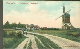 Westmalle  :    Molenzicht . Schueroven  -  Moulin - Molen - Malle