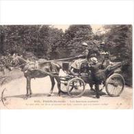 FRATP0851C-LFTDC315TTRSC.Tarjeta Postal DE FRANCIA.Señora Y Coche De Caballos En PARIS - Postales