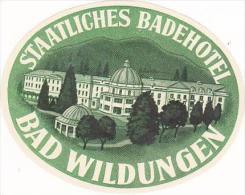 GERMANY BAD WILDUNGEN STAATLICHES BADEHOTEL VINTAGE LUGGAGE LABE