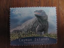 2125 Iguana Iguane Cyclura Oeil Oeuf Egg Reptile Nac Dragon Dinosaure 2004 - Reptiles & Batraciens