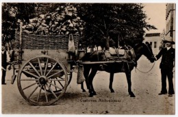 Azores, Horse And Carriage, Early 1900´s - Açores