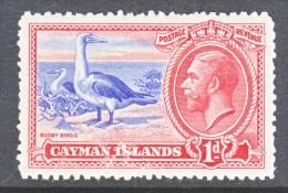 CAYMAN ISLANDS  87  *  FAUNA BOOBY BIRDS - Cayman Islands