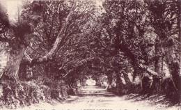 Chemin Creux A Kerlagadic Pres Bannalec - Sonstige Gemeinden
