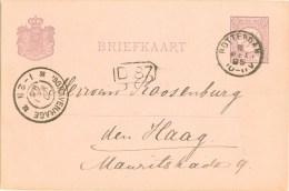 HANDGESCHREVEN BRIEFKAART Uit 1895 Van ROTTERDAM Naar DEN HAAG * VOORDRUK NVPH 33 (8779N) - Ganzsachen