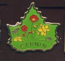 "59 ""  CARNIN  ""   Bc Pg11 - Cities"