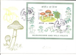 KO-N013 / KOREA -  Brief,  Pilze Auf Block Mit Erst-Tag-Stempel 1989 (mushroom,seta) - Korea (Nord-)