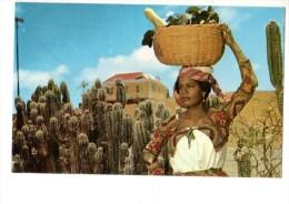 C P M-----ANTILLES----BAHAMAS----NATIVE FRUIT-GRIL---curacao-----voir 2 Scans - Bahamas