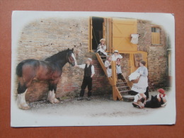 35664 PC: AGRICULTURE:  The Granary Steps.  COUNTRYLOVERS  COLLECTION. A Celebration Of Edwardian Country Life. - Farms