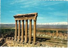 C P S M-C P M--LIBAN--BAALBECK--colonna De Du Temple De Jupiter-- Voir 2 Scans - Lebanon