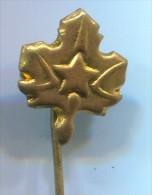 SCOUT, Scoutisme, Eclaireur -  Yugoslavia, Metal, Pin, Badge - Scoutisme