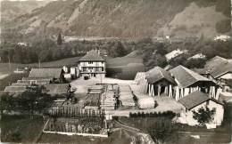 Thônes 74 Haute Savoie  Scierie Guelpa Tronchine  Bois - Thônes