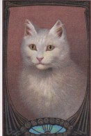 Belle CPA  Illustrée Décor  ART NOUVEAU  Joli CHAT BLANC - Cats