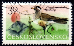CZECHOSLOVAKIA 1965 Mountain Birds - 30h Dotterel  FU - Tchécoslovaquie