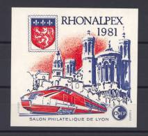 France  -  Blocs CNEP  :  Yv  2  **   Rhonalpex 1981 - CNEP