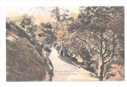 Malvern THE LOVERS WALK NEAR ST ANNS WELL Vintage Postcard Worcestershire -  Unused - Worcestershire