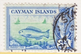CAYMAN ISLANDS  128   (o)  PARROT  FISH - Cayman Islands