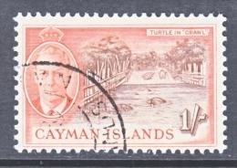 CAYMAN ISLANDS  131   (o)   TURTLES - Cayman Islands