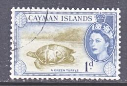 CAYMAN ISLANDS  137   (o)   GREEN  TURTLE - Cayman Islands