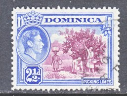 DOMINICA  101   (o)   PICKING  LIMES - Dominica (...-1978)