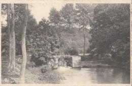 CPA HAM SUR HEURE- THE DAM - Ham-sur-Heure-Nalinnes