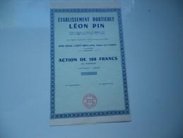 LEON PIN (saint Genis Laval- RHONE) - Actions & Titres