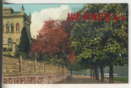Halle V. 1918  Allee An Der Saale,Rotdorn Und Kastanie  (33579) - Halle (Saale)