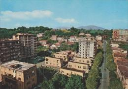 VALMONTONE (  ROMA) - F/G  COLORE (280714) - Altre Città