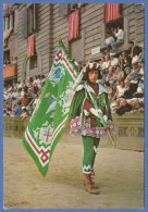 SIENA- Il PALIO -F/G Colore (40809) - Siena