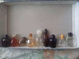 Lot De 9 Miniatures Yves Rocher - Miniatures Modernes (à Partir De 1961)