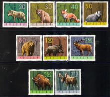 Poland 1965 - Forest Animals - 1944-.... Republic