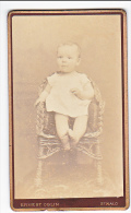 23905 Photographie Ancienne - Photographe Ernest Oblin -35 France Saint Malo Rue St Vincent -enfant Bebe - Personnes Anonymes