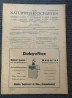 NATURWISSENSCHAFTEN 1944 - Revues & Journaux