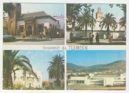 Tlemcen            Souvenir         Multivues - Tlemcen