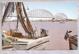 CPM - Morgan City (Etats-Unis) - The Atchafalaya River - Etats-Unis
